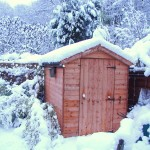 A garden shed with snow